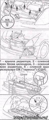 Объем масел и жидкостей toyota prius 20-30